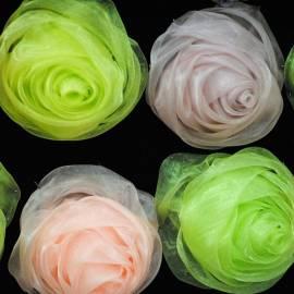 Dekoratyvinės gėlės